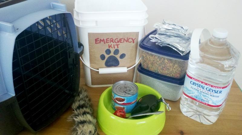 Emergency Preparedness Dog Food