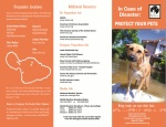 In Case of Disaster: Protect Your Pets