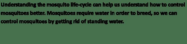 LifeCycleText