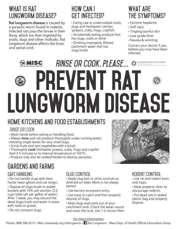 Rat Lungworm BandW Flyer-8.5x11.jpg